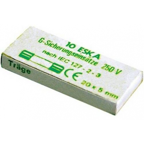FUSIBLE 5X20 6.3A TEMPORISE 250V LOT DE 10 - TIQ8211