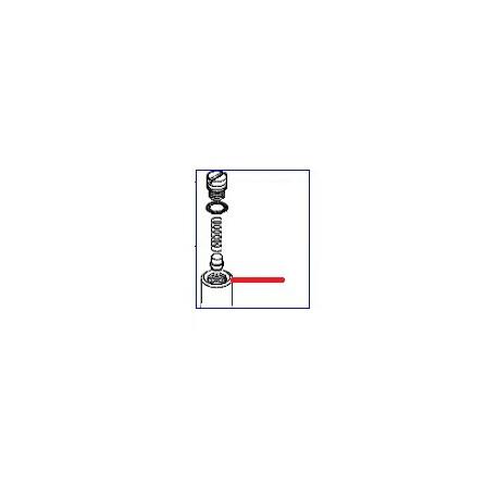 TETE GOMME ORIGINE ASTORIA - NFQ67155