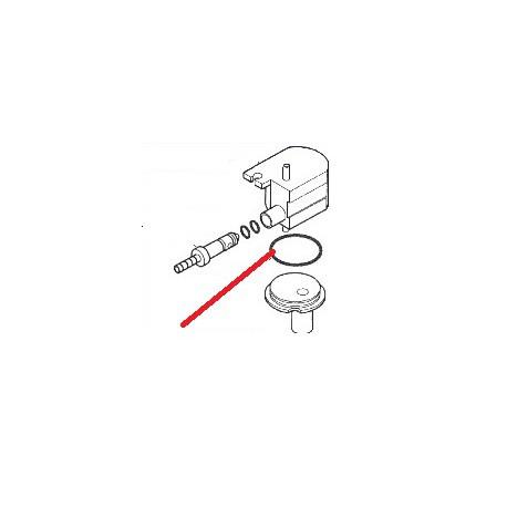 CORPS CAPPUCCINO ORIGINE ASTORIA - NFQ73965555