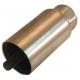 PIED BOULON FIXE M12 H100MM - TIQ4434