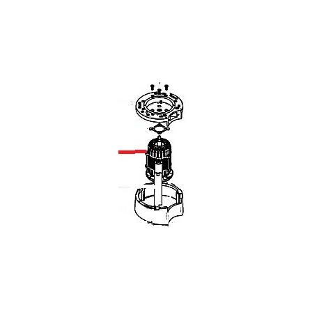 MOTEUR 230V 356W 13 RPM MARFIL ORIGINE CUNILL - PAQ642