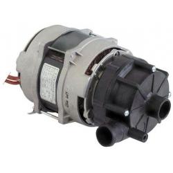 POMPE 0.30HP 230V ZF170SX