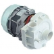 ELECTROPOMPE 0.75HP 230V L45 - TIQ61117