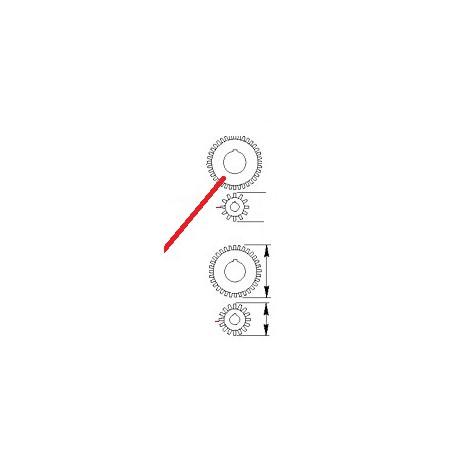 PIGNON MOTOREDUCTEUR Z16 ORIGINE CIMBALI - PQ6682
