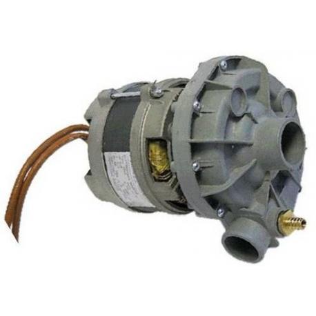 ELECTROPOMPE 0.33HP 220V/50HZ - TIQ1318
