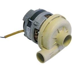 ELECTROPOMPE OLYMPIA L71T5 ELFRAMO 0.5HP 230V 50HZ ENTREE 50