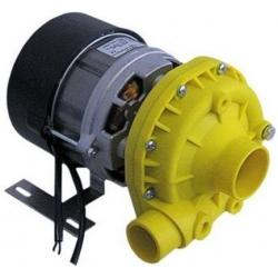 ELECTROPOMPE SX 550W 0.75HP 230V 50HZ 4A ENTREE 50MM