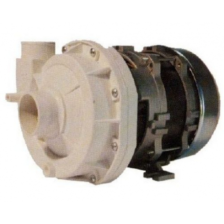 POMPA 0.60 KW 230/1/50 N45.N50.N90 - FVYQ8243