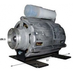 MOTOR COMPACT 100W/220V GENUINE