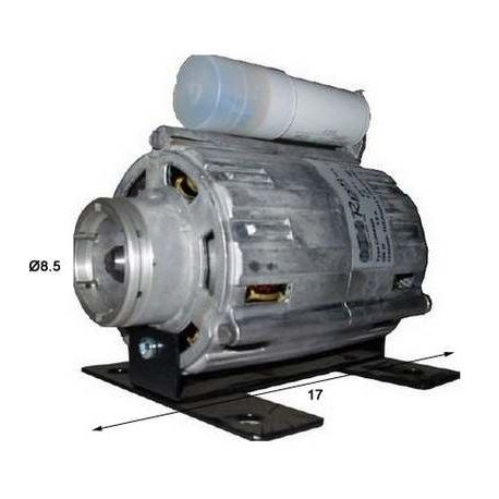 MOTEUR COMPACT 100W/220V - FZQ655