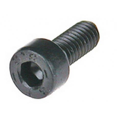VIS ELECTROVANNE INOX M4X10 - IQ657