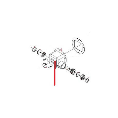 SEEGER DA 35 ORIGINE FAMA - SNQ6569