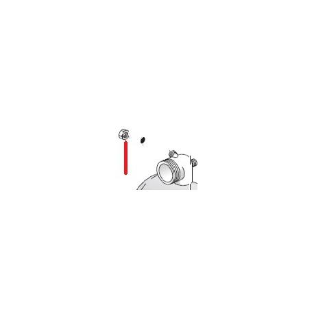 ECROU BORGNE 1/8 ORIGINE SPAZIALE - FCQ6524
