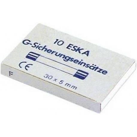 FUSIBLE 5X30MM 10A SEMI TEMPORISE PAR 10 - TIQ8385