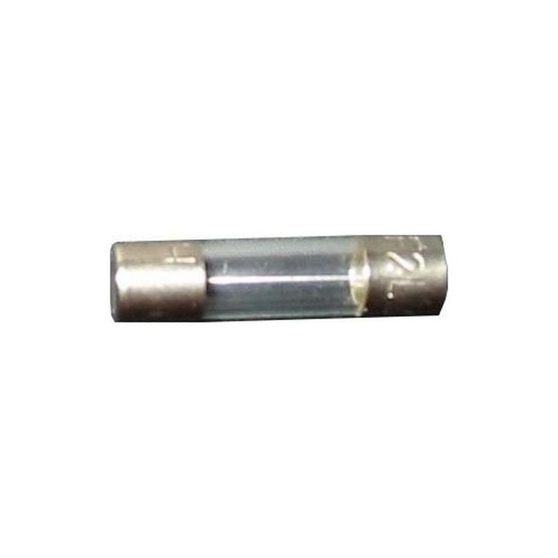 Lot de 10 fusibles rapides F 1A 250V 5x20mm