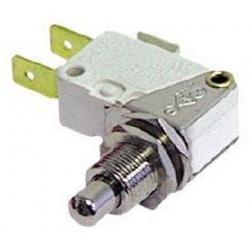 MICROINTERRUPTEUR 10A 250V - BYQ6838