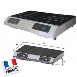 PLAQUE DE CUISSON A INDUCTION DOUBLE FOYER  - NIQ6757