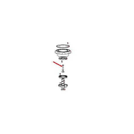 VIS H M 6 X 30 ZN ORIGINE SANTOS - FAQ00858
