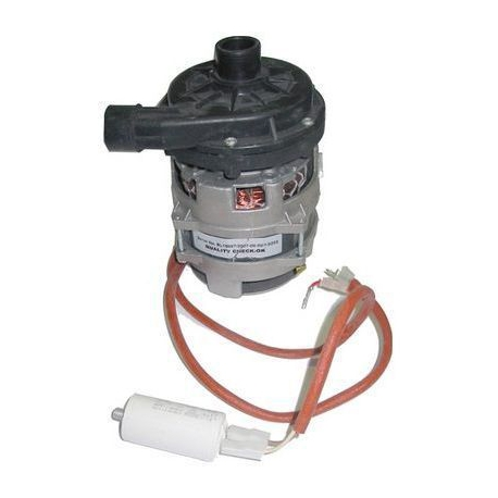 NEQ695-ELECTROPOMPE POUR GEMINI PASSPORT PROGRAM25 0.33HP 230V 50HZ