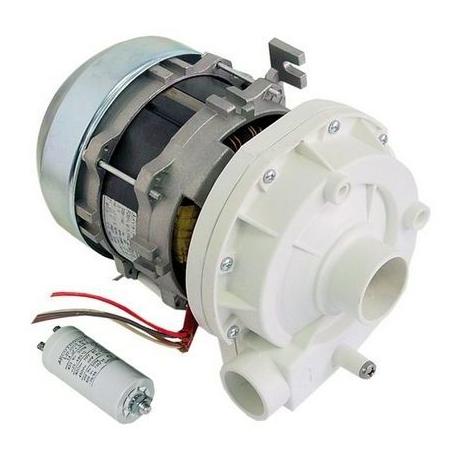TIQ60056-ELECTROPOMPE LGB ZF320VSX 600W 0.8HP 230V 50HZ 2.5A