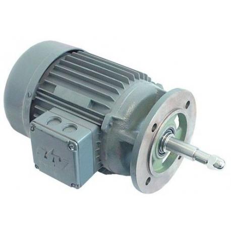 TIQ61750-MOTEUR POMPE 0.55KW-230/380V