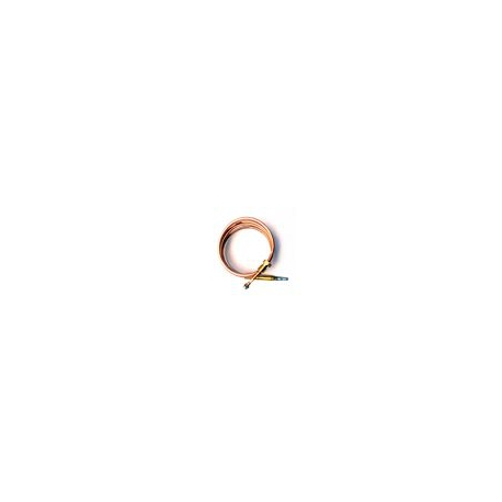 OGQ3489-THERMOCOUPLE SERIE 200 L = 850