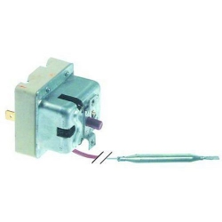 THERMOSTAT 1POLE SECURITE