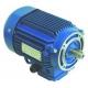TIQ77038-MOTEUR 0.5KW 230/400V 50HZ 4PL ORIGINE PIZZA GROUP